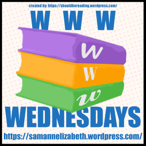 WWW Wednesday logo